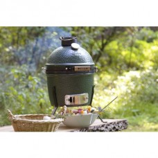 houtskool barbecue big green egg mini